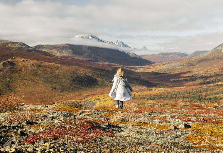 Couleurs d'automne au Yukon